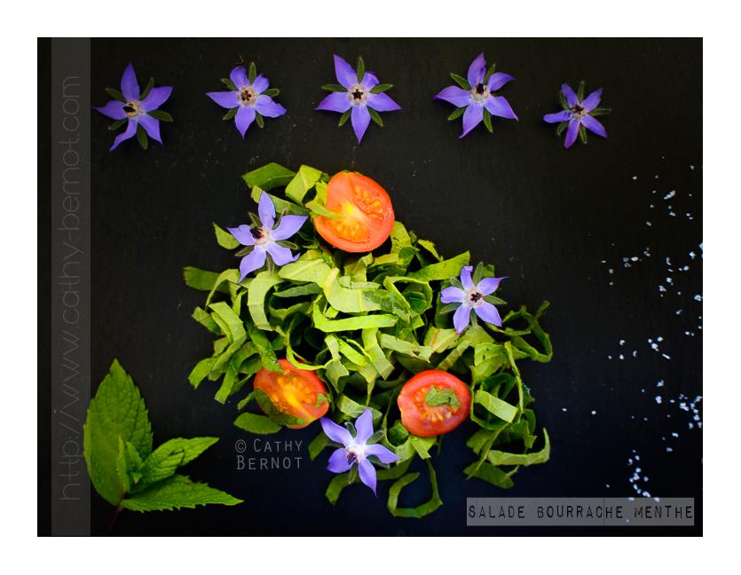 salade-feuilles-de-bourrache