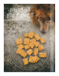 biscuit-apero-sans-gluten-aux-graines