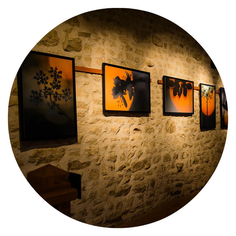 décoration photographie d'art