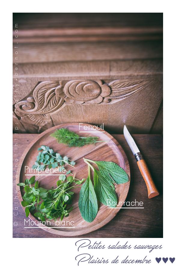 salade-sauvage-hiver