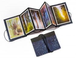 collection-leporello livre d'artiste